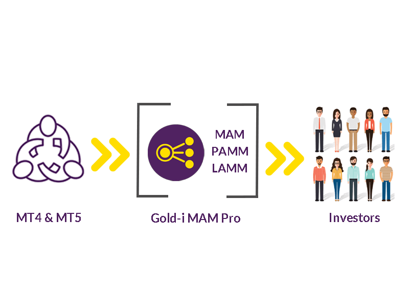 mam-pro-schematic-showing-mam-pamm-lamm
